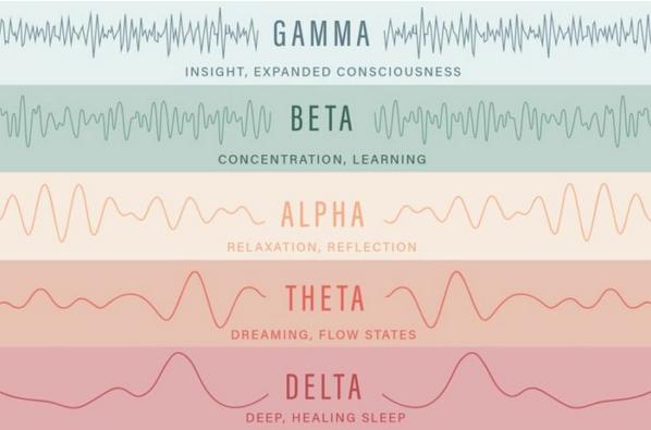 Schumann Resonance Human Brain Waves